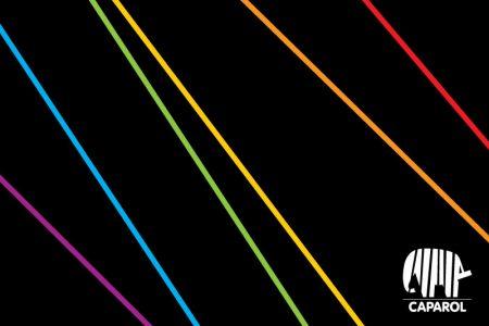 afbeelding realisatie   Verf- & kleuradvies Bryan